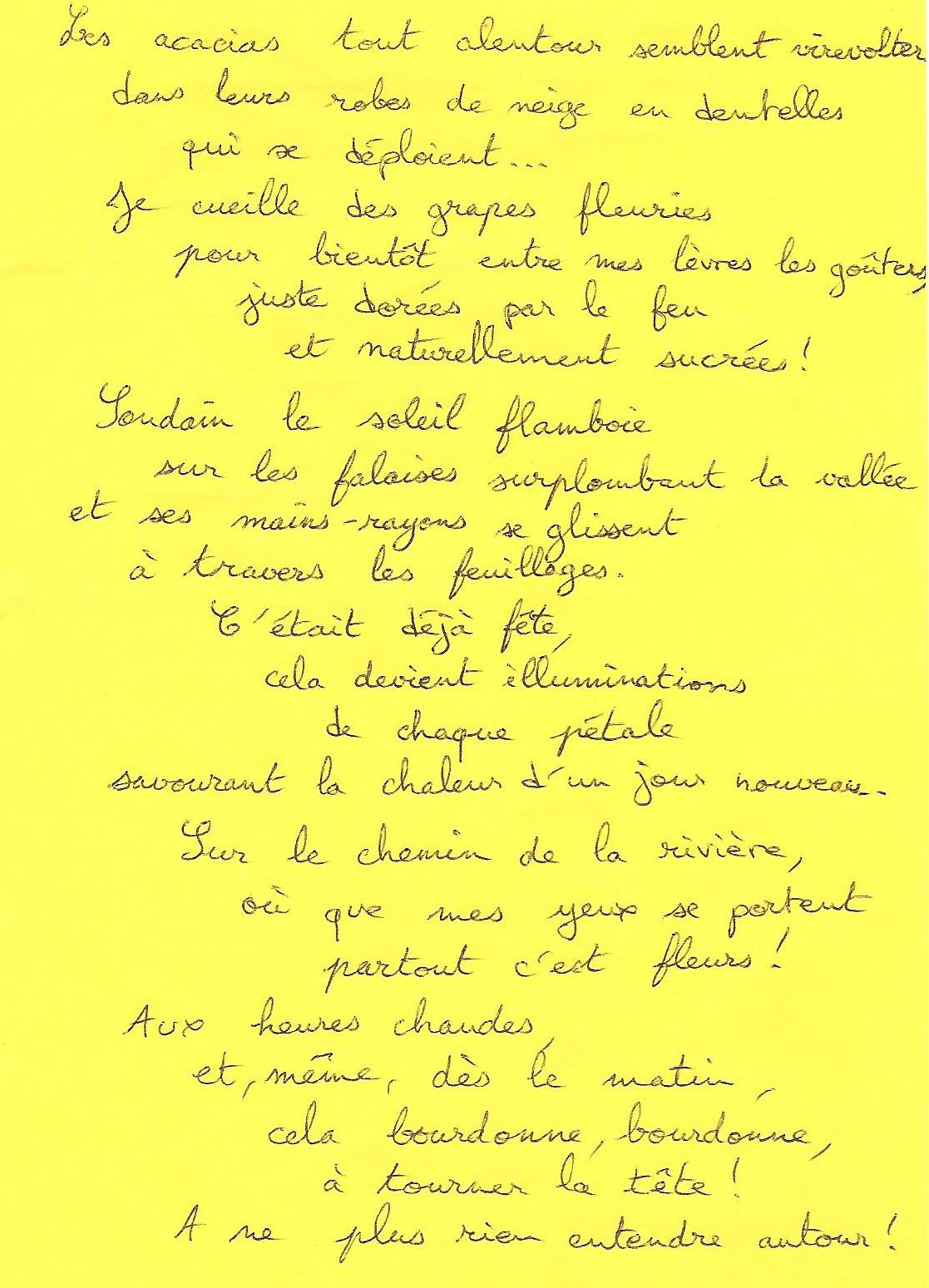 acacias-virevoltent-1modifié
